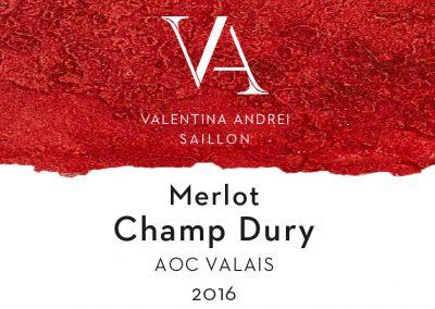 Merlot Champ Dury